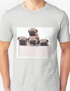 Three charming pug puppy in a box Unisex T-Shirt
