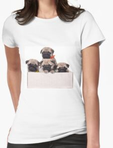 Three charming pug puppy in a box Womens Fitted T-Shirt