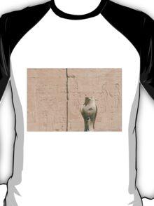 Skyfalls  T-Shirt