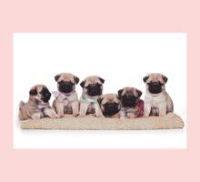 Six charming pug puppy Kids Clothes