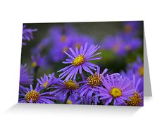 Blue Tuesday Greeting Card