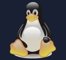 Penguin Linux Tux Crystal Kids Clothes