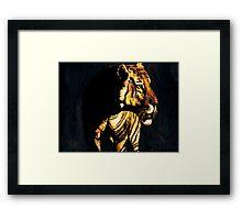 Sunset Tiger Framed Print