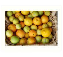 Organic citrus Art Print