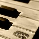 Grunge piano keys by LeonaParadoxa