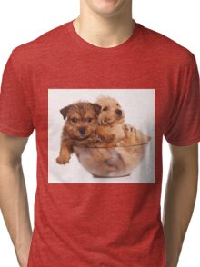 Two funny red terrier puppy in a cup Tri-blend T-Shirt