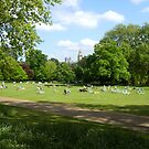 Summer in St James' Park by Tom Clancy