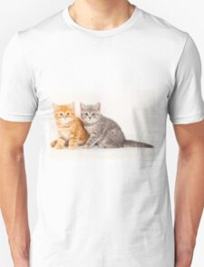 Two striped kitten Unisex T-Shirt