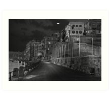 Hand-Held Mono Night shot Art Print