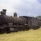 Old Steam Locomotive at Dorrigo, NSW, Australia by Bev Pascoe