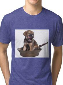 Funny Brown Puppy Tri-blend T-Shirt