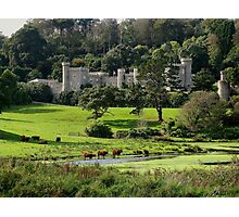 Caerhays & Constable Photographic Print