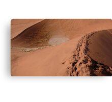 Sossusvlei dunes Canvas Print