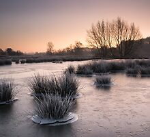 Cold Snap by Christopher Cullen