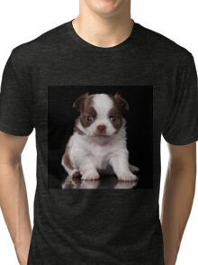 chihuahua puppy Tri-blend T-Shirt