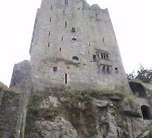 Blarney Castle by BlairCWoodward