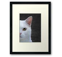 Face On Framed Print
