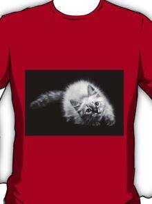fluffy kitten T-Shirt