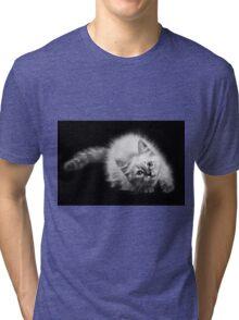 fluffy kitten Tri-blend T-Shirt