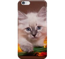 fluffy kitten with flowers iPhone Case/Skin