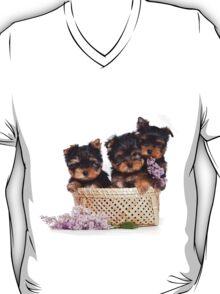 Three Puppy York and flowers T-Shirt