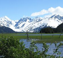 PORTAGE ALASKA NEAR TURNAGAIN ARM by 1arcticfox