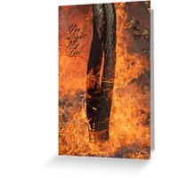 You light my fire. Greeting Card