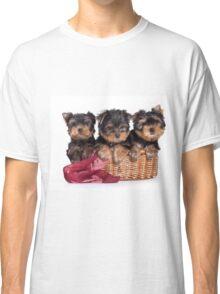 Three Puppy York Classic T-Shirt