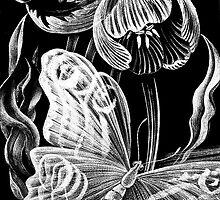 Butterfly & Flower Etchings by Susie Peek
