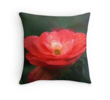One Single Drop Throw Pillow