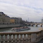 Tourist Barge, Seine River, Paris by Robert Arconti