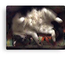 Ivan Asleep Canvas Print