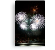 Consider The Lily - Sydney Harbour - New Years Eve - Midnight Fireworks Canvas Print