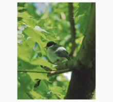 Cute baby bird on branch Baby Tee
