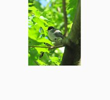 Cute baby bird on branch T-Shirt