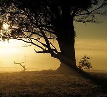 Rural sunrise by mashdown