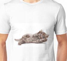 Funny fluffy kitten Unisex T-Shirt