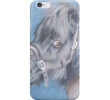Little Shetland iPhone Case/Skin