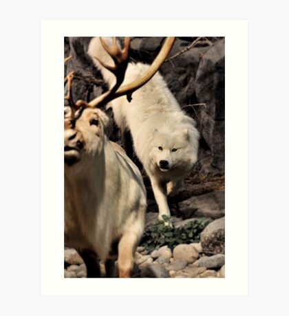 CANIS LUPUS - The Hunt Art Print
