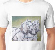 Percheron pair Unisex T-Shirt