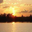 Sunset with the Loons by Diane Petker