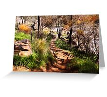 Path down to the river's edge Greeting Card