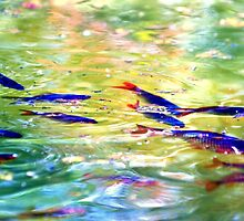 fish fish! by palinta