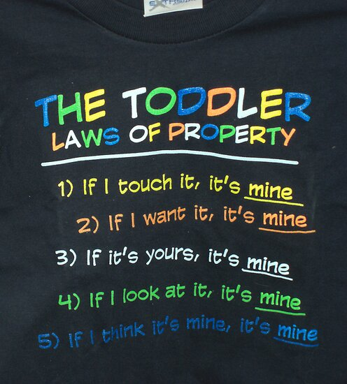 Typical Toddler Laws of Property by Nanagahma