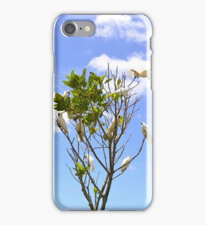 Kakadu iPhone Case/Skin