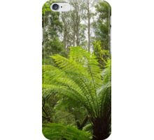 Tree Fern iPhone Case/Skin
