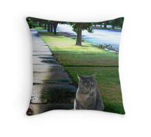 After The Rainstorm II Throw Pillow