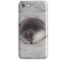Austraian fur seal iPhone Case/Skin