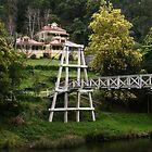A Bridge to Cross by Julie Bird