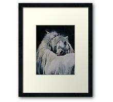 Preening Ponies Framed Print